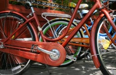 a row of bikes on a sunny day