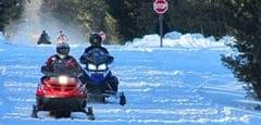 Snowmobiles on winter trail