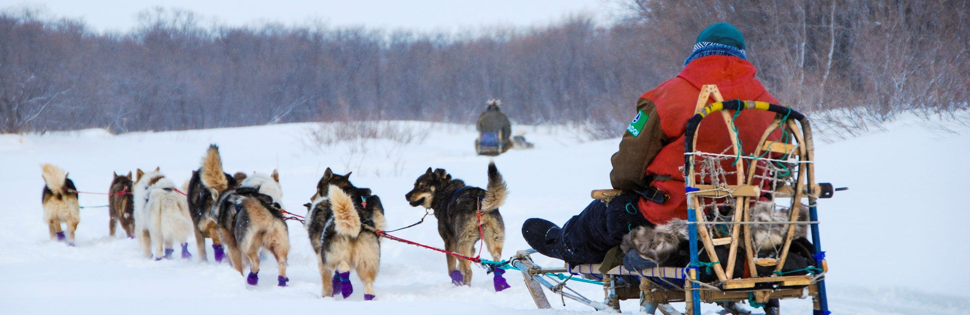 slide-winter-dog-sledding