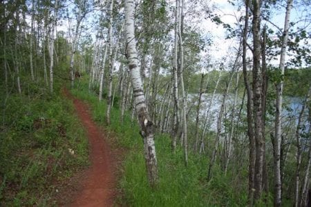 cuyuna-mountain-bike-trail-26