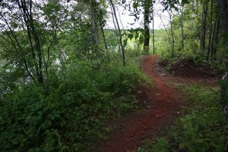 cuyuna-mountain-bike-trail-29