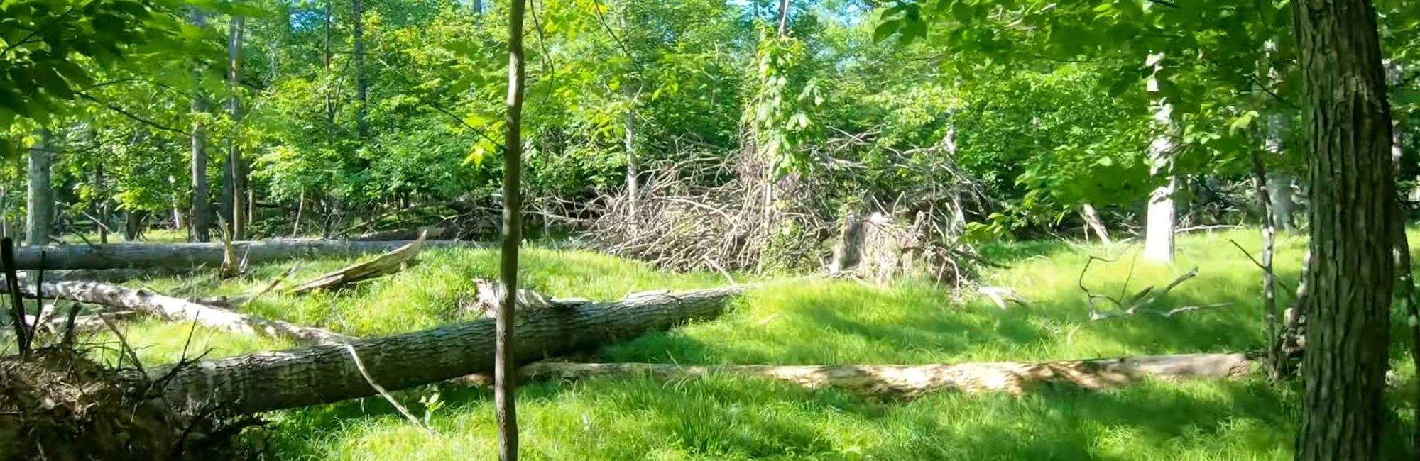 slide-blog-burial-mounds