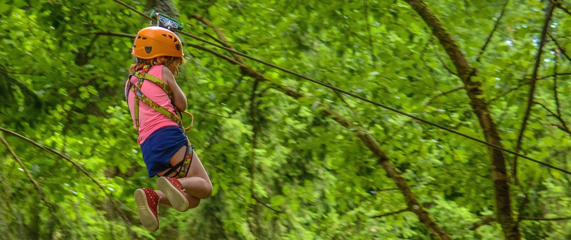 Young Girl On A Zip Line In A Forest Adventure Park