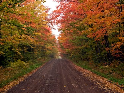 home-minnesota-fall-color-tours.jpg