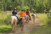 Outback Trail Rides