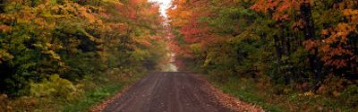 Fall Colors Tours